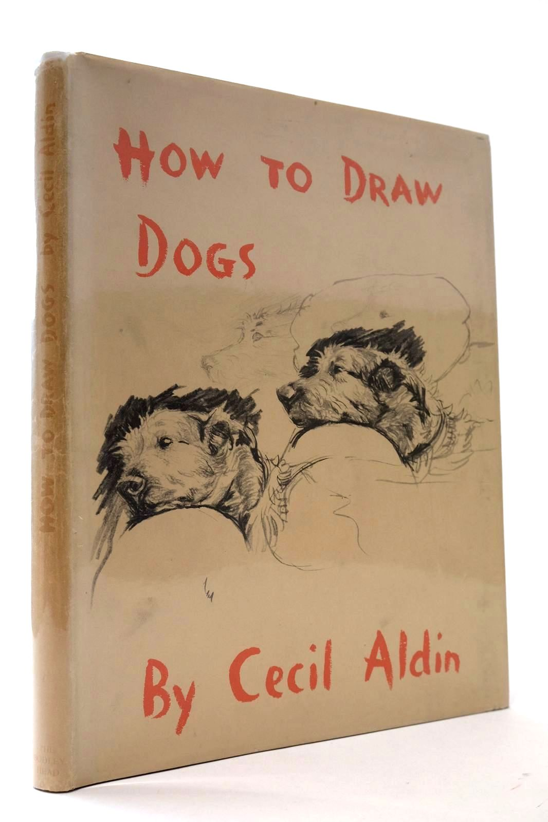Photo of HOW TO DRAW DOGS