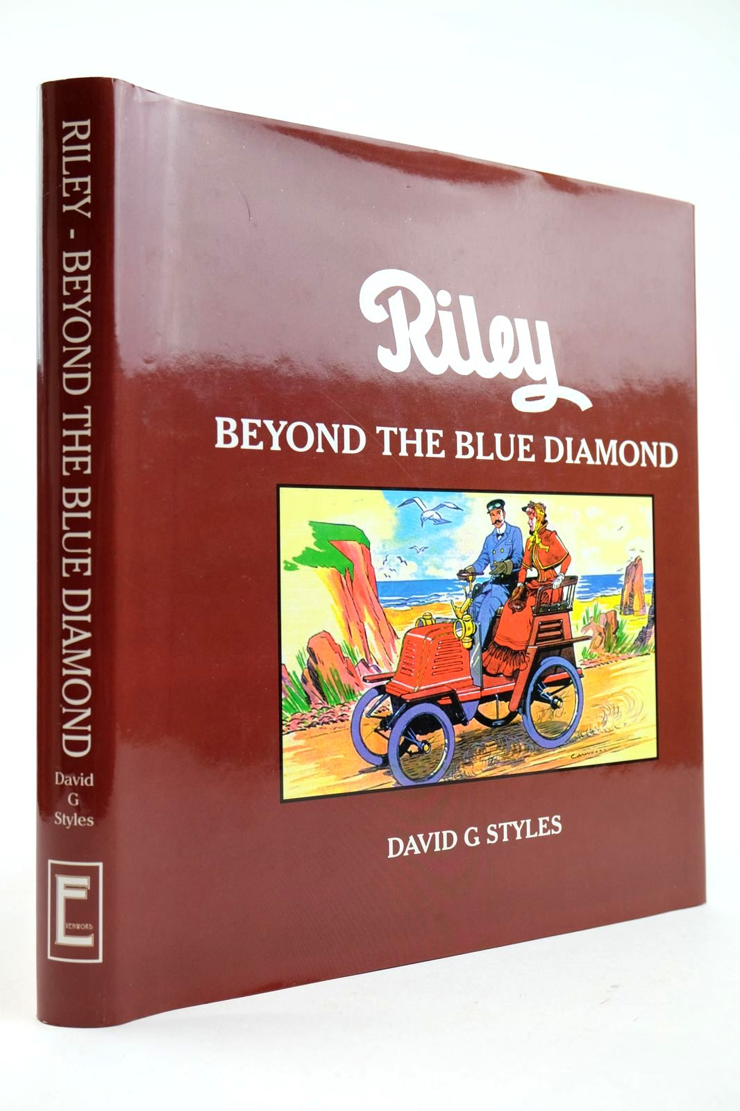 Photo of RILEY BEYOND THE BLUE DIAMOND written by Styles, David G. published by Evenword Limited (STOCK CODE: 2132567)  for sale by Stella & Rose's Books