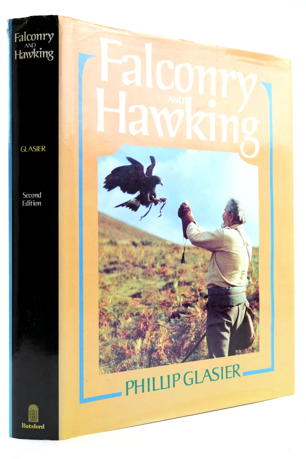 Photo of FALCONRY AND HAWKING- Stock Number: 2132664