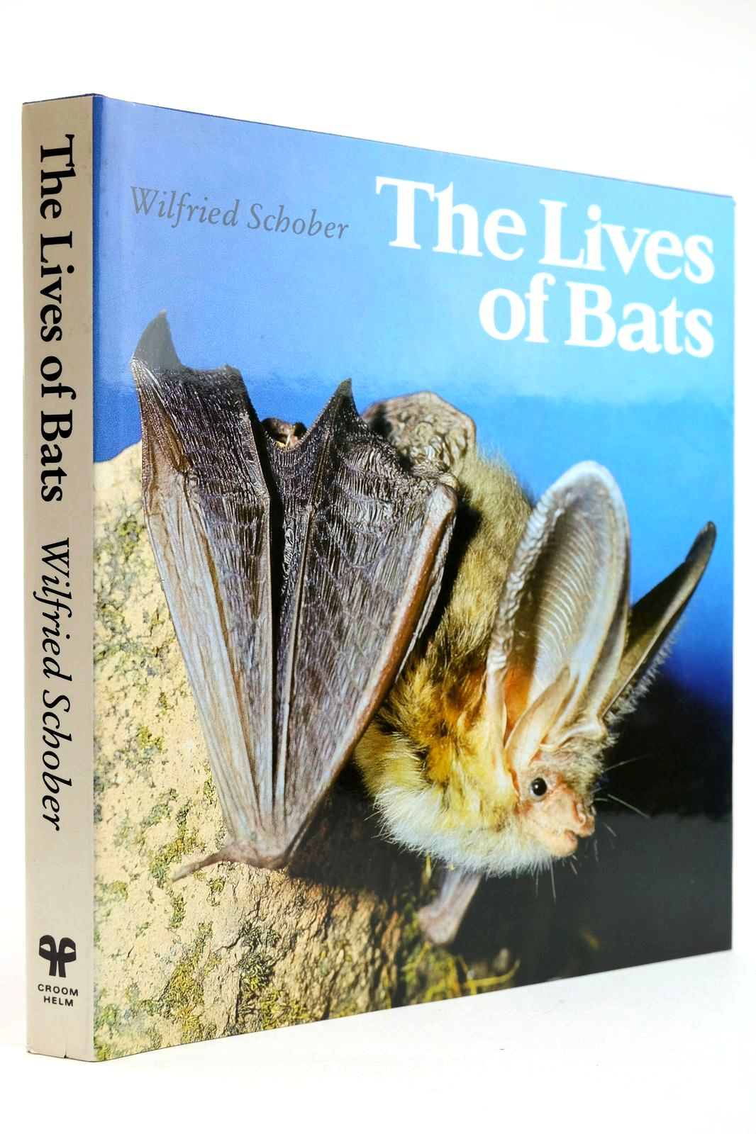 Photo of THE LIVES OF BATS written by Schober, Wilfried published by Croom Helm (STOCK CODE: 2132665)  for sale by Stella & Rose's Books