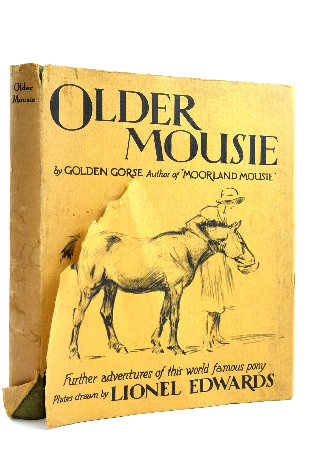 Photo of OLDER MOUSIE- Stock Number: 2132968