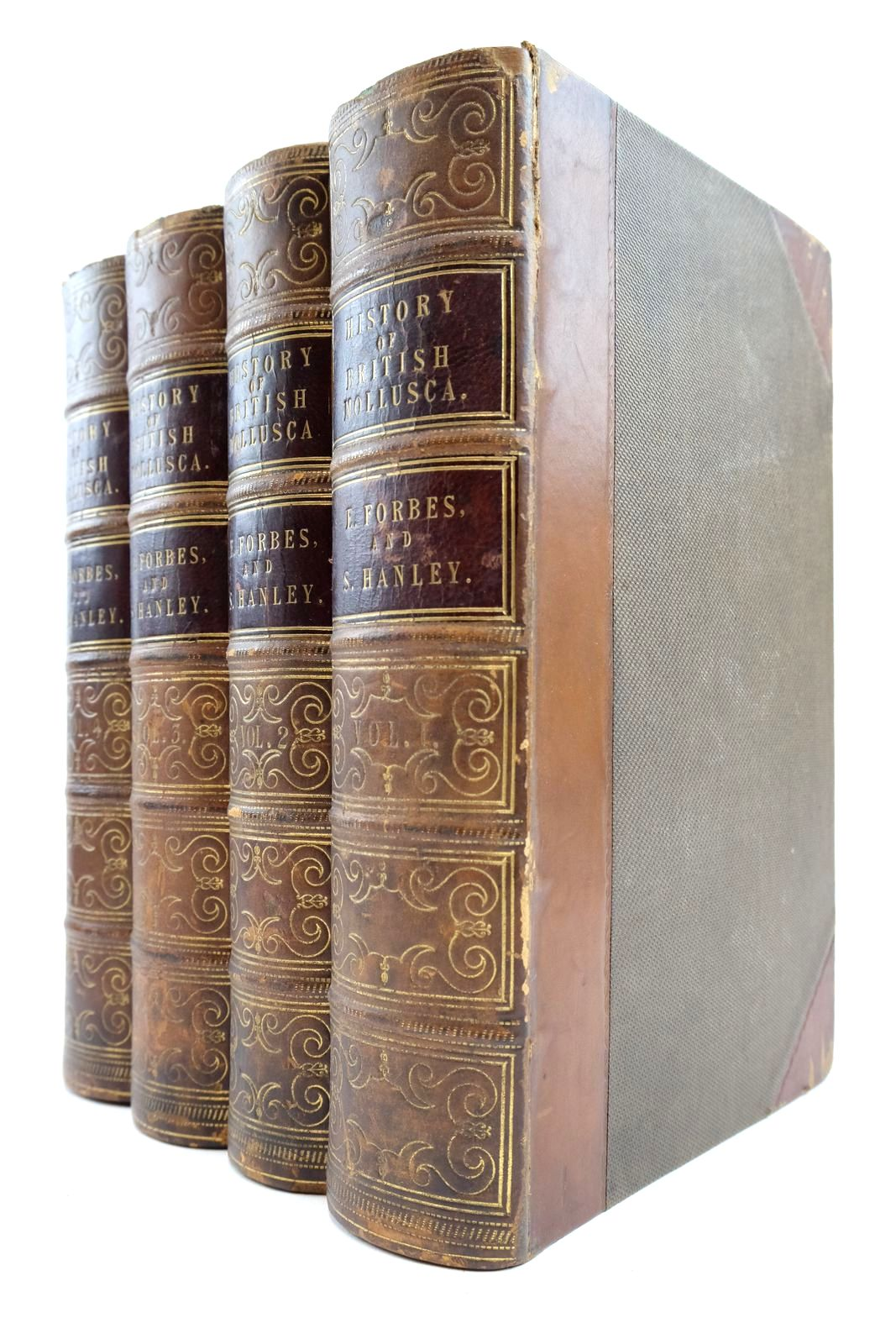 Photo of A HISTORY OF BRITISH MOLLUSCA, AND THEIR SHELLS (4 VOLUMES) written by Forbes, Edward Hanley, Sylvanus published by John Van Voorst (STOCK CODE: 2133307)  for sale by Stella & Rose's Books