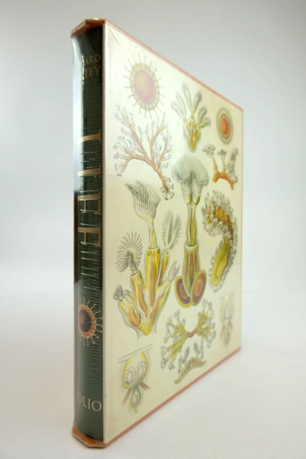 Photo of LIFE written by Fortey, Richard published by Folio Society (STOCK CODE: 2134246)  for sale by Stella & Rose's Books