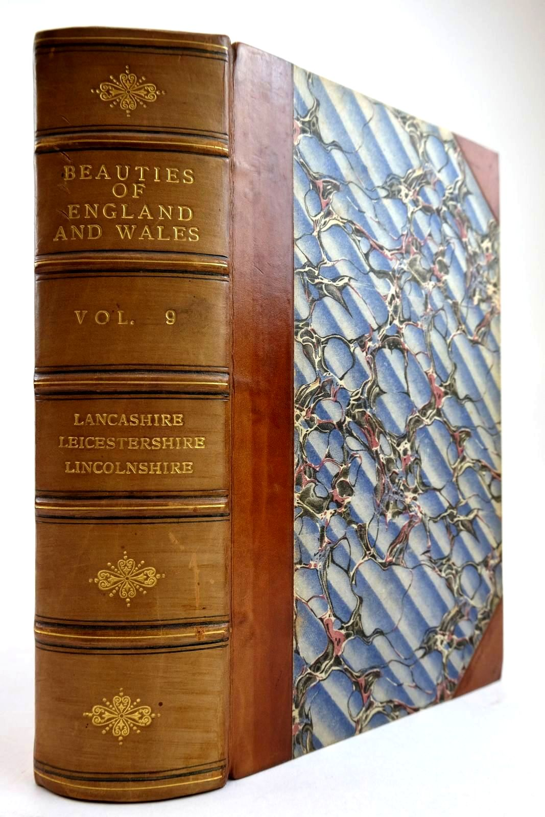 Photo of THE BEAUTIES OF ENGLAND AND WALES VOL. IX- Stock Number: 2134257