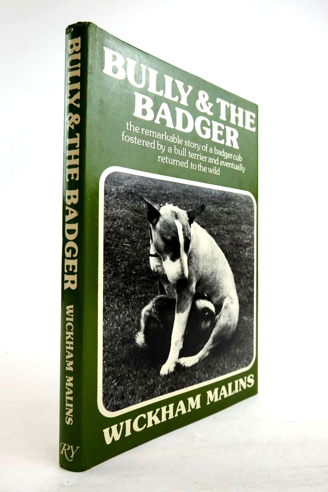 Photo of BULLY & THE BADGER- Stock Number: 2134294