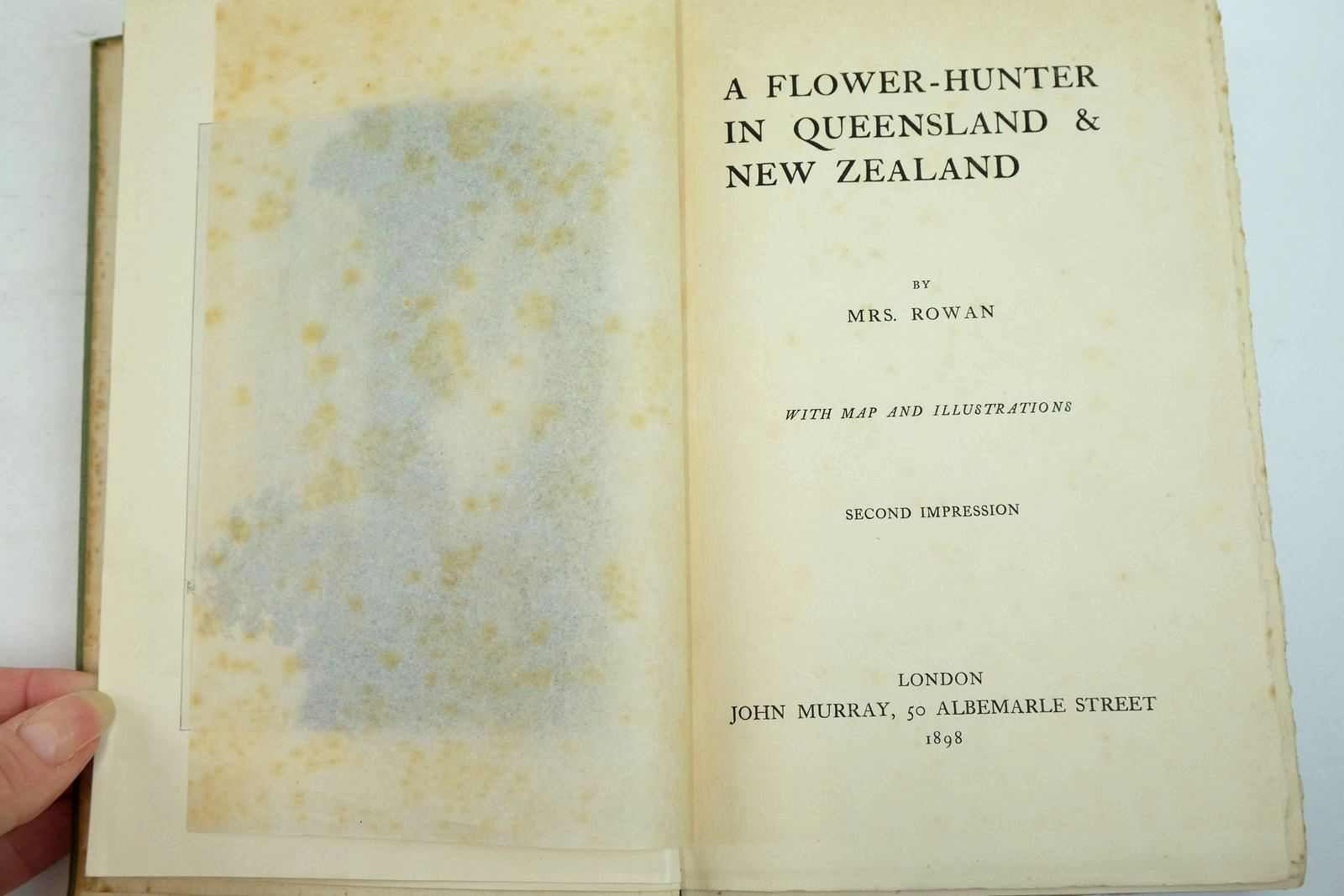 Photo of A FLOWER-HUNTER IN QUEENSLAND & NEW ZEALAND written by Rowan, Mrs. published by John Murray (STOCK CODE: 2134444)  for sale by Stella & Rose's Books