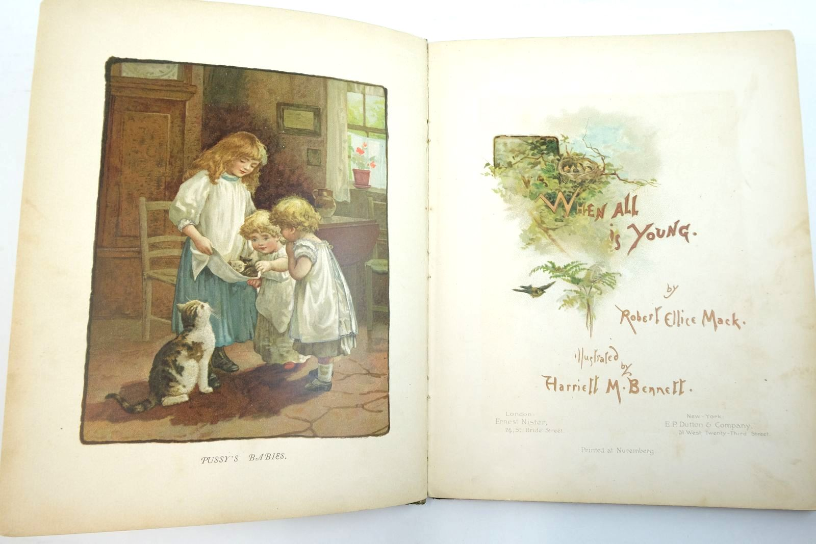 Photo of WHEN ALL IS YOUNG written by Mack, Robert Ellice illustrated by Bennett, Harriett M. published by Ernest Nister, E.P. Dutton & Co. (STOCK CODE: 2134716)  for sale by Stella & Rose's Books