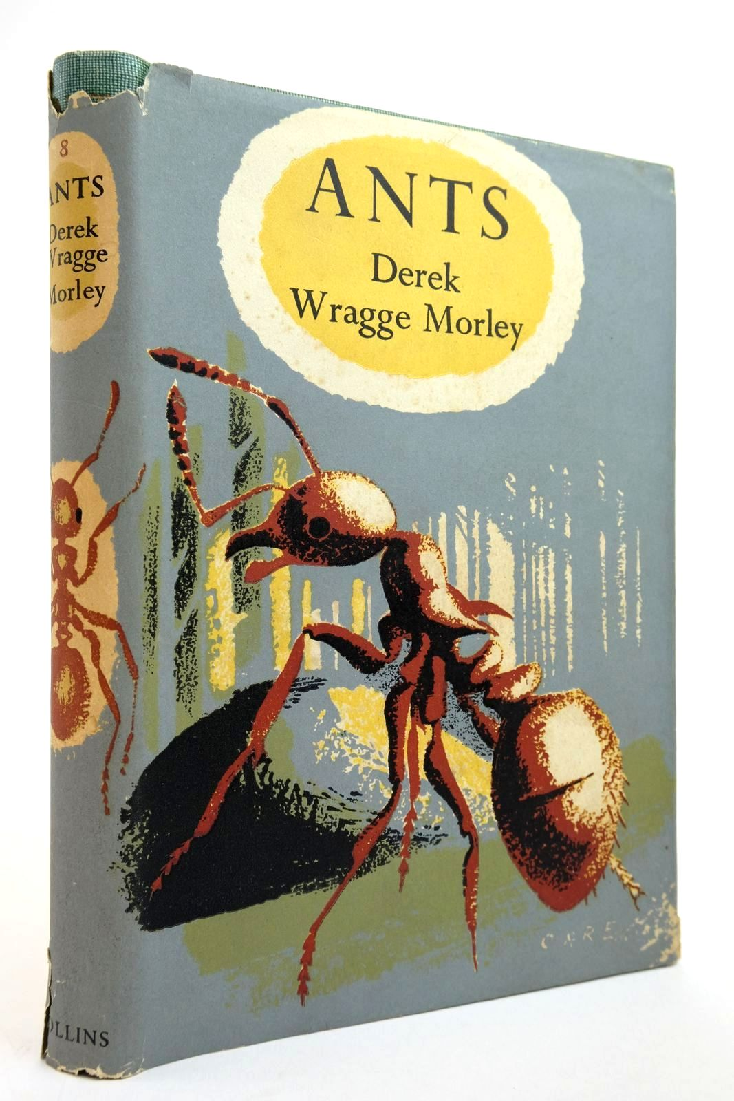 Photo of ANTS (NMN 8)- Stock Number: 2134990