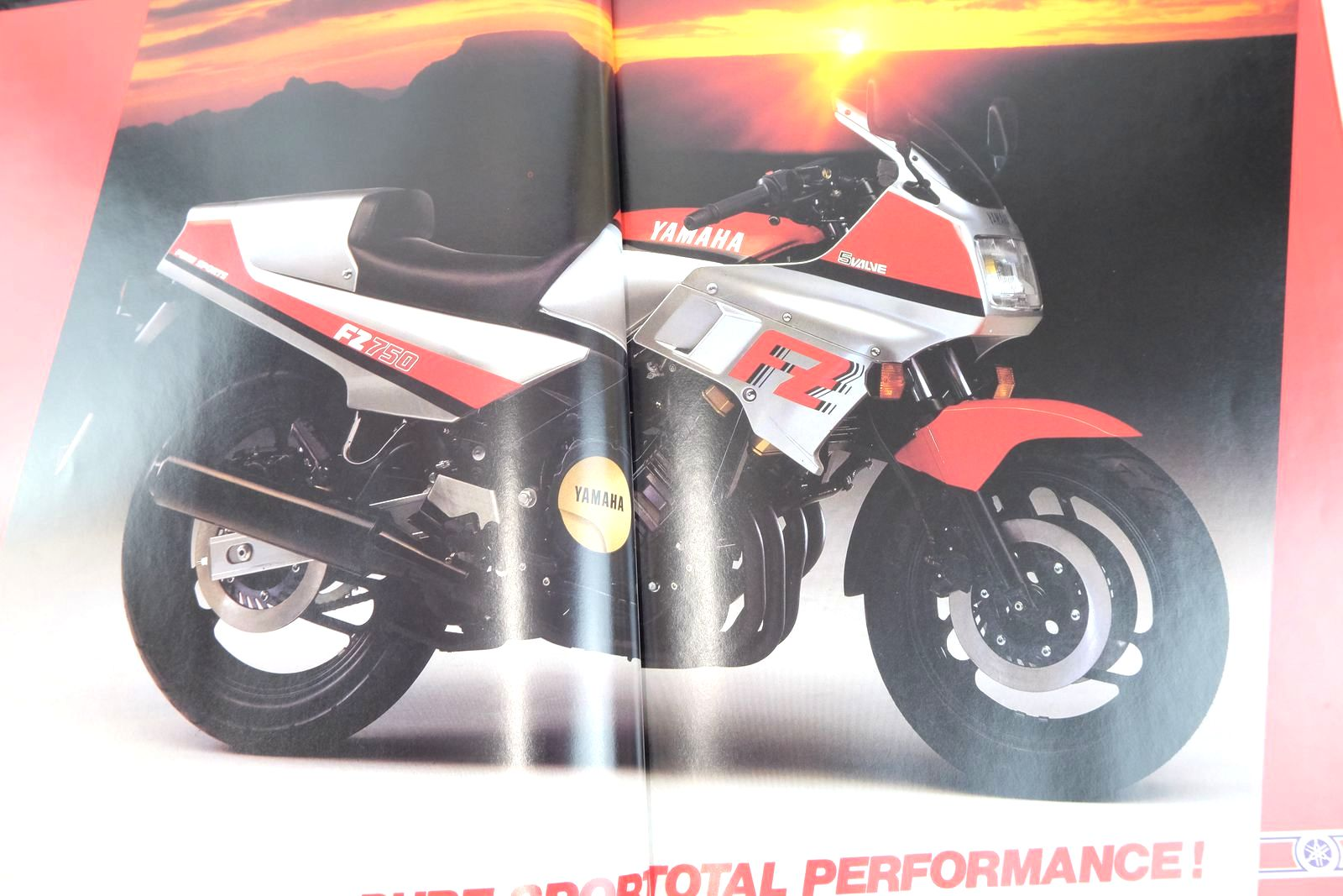 Photo of MOTOCOURSE 1984-85 published by Hazleton Publishing (STOCK CODE: 2135143)  for sale by Stella & Rose's Books