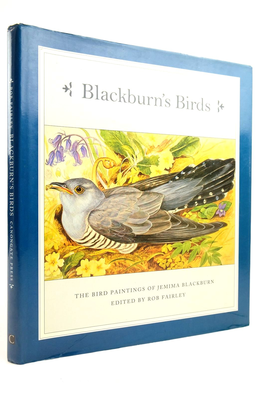 Photo of BLACKBURN'S BIRDS- Stock Number: 2135401