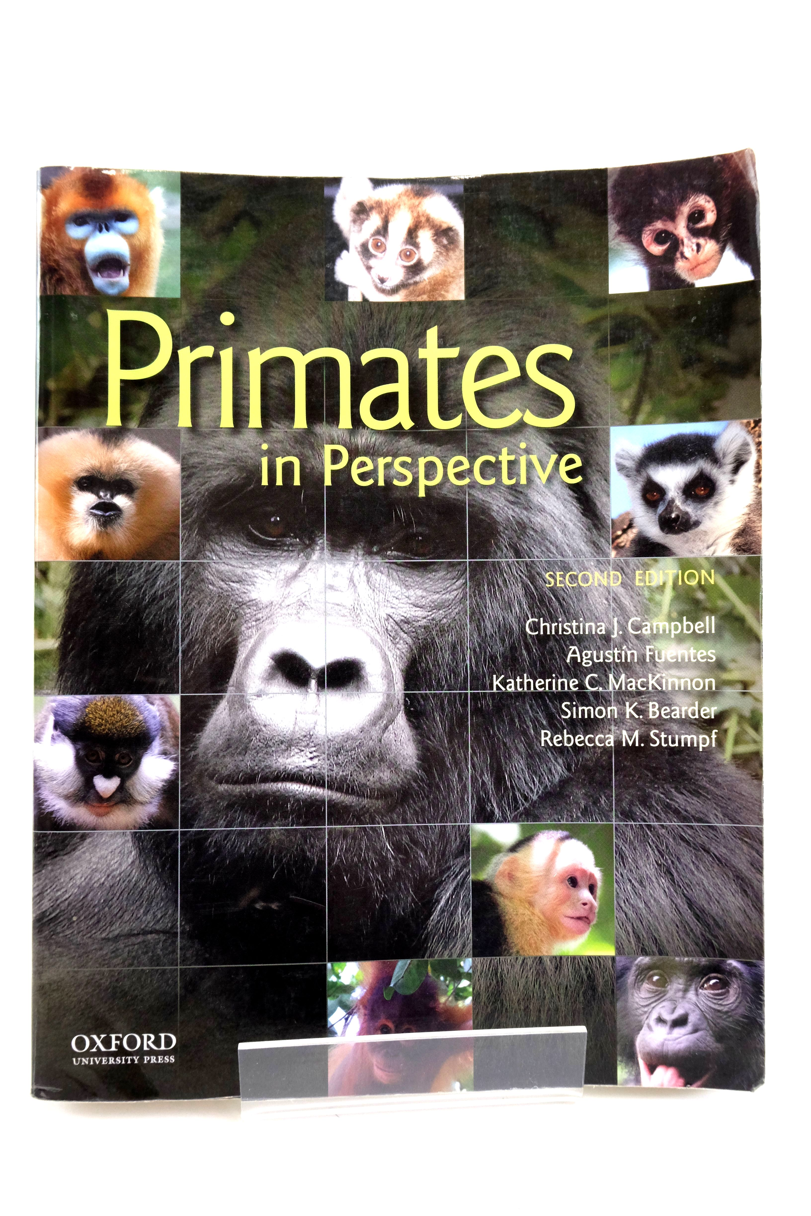 Photo of PRIMATES IN PERSPECTIVE- Stock Number: 2135532