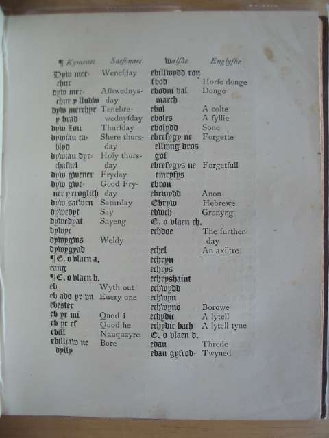 Photo of A DICTIONARY IN ENGLISH AND WELSH written by Salesbury, William (STOCK CODE: 557680)  for sale by Stella & Rose's Books