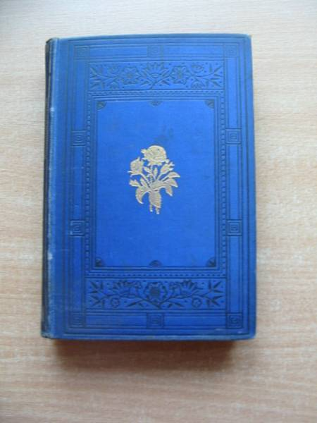 Photo of THE ITALIAN'S CHILD AND OTHER TALES published by W. & R. Chambers (STOCK CODE: 585236)  for sale by Stella & Rose's Books
