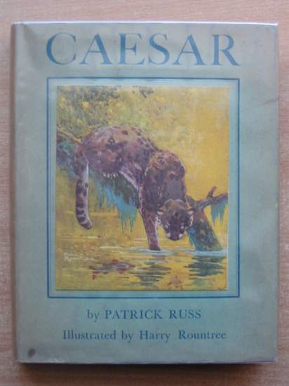 Photo of CAESAR THE LIFE STORY OF A PANDA LEOPARD written by Russ, Richard Patrick O'Brian, Patrick illustrated by Rountree, Harry published by G.P. Putnam's Sons (STOCK CODE: 589147)  for sale by Stella & Rose's Books