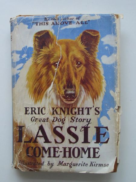 Photo of LASSIE COME-HOME- Stock Number: 596707