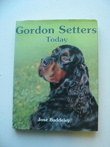 Photo of GORDON SETTERS TODAY written by Baddeley, Jose published by Ringpress Books (STOCK CODE: 597332)  for sale by Stella & Rose's Books