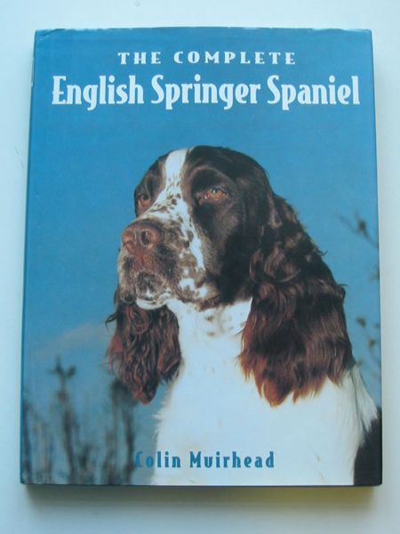 Photo of THE COMPLETE ENGLISH SPRINGER SPANIEL- Stock Number: 597336