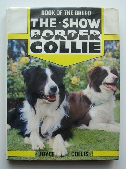 Photo of THE SHOW BORDER COLLIE written by Collis, Joyce published by Ringpress Books (STOCK CODE: 597444)  for sale by Stella & Rose's Books