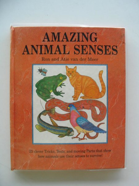 Photo of AMAZING ANIMAL SENSES written by Van Der Meer, Ron<br />Van Der Meer, Atie published by Child's Play (International) Ltd. (STOCK CODE: 604742)  for sale by Stella & Rose's Books