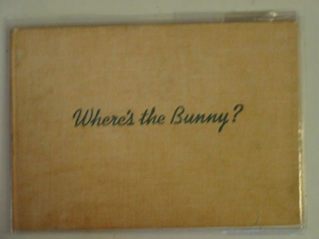 Photo of WHERE'S THE BUNNY? written by Carroll, Ruth illustrated by Carroll, Ruth published by Collins (STOCK CODE: 621779)  for sale by Stella & Rose's Books