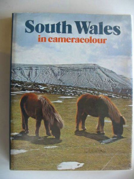 Photo of SOUTH WALES IN CAMERACOLOUR written by Forss, Derek published by Town County Books (STOCK CODE: 666561)  for sale by Stella & Rose's Books