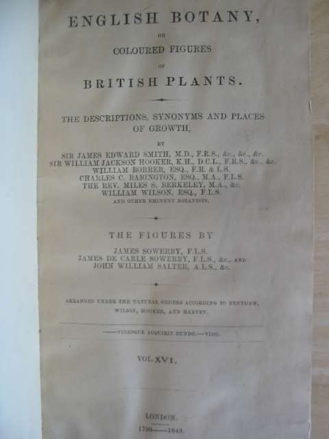 Photo of ENGLISH BOTANY OR COLOURED FIGURES OF BRITISH PLANTS VOLUME XVI written by Smith, James Edward