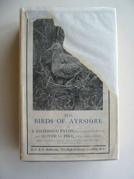 Photo of THE BIRDS OF AYRSHIRE written by Paton, E. Richmond Pike, Oliver published by H.F. & G. Witherby Ltd. (STOCK CODE: 693359)  for sale by Stella & Rose's Books