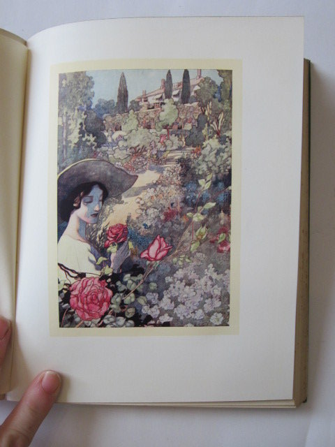 Photo of OUR SENTIMENTAL GARDEN written by Castle, Agnes
