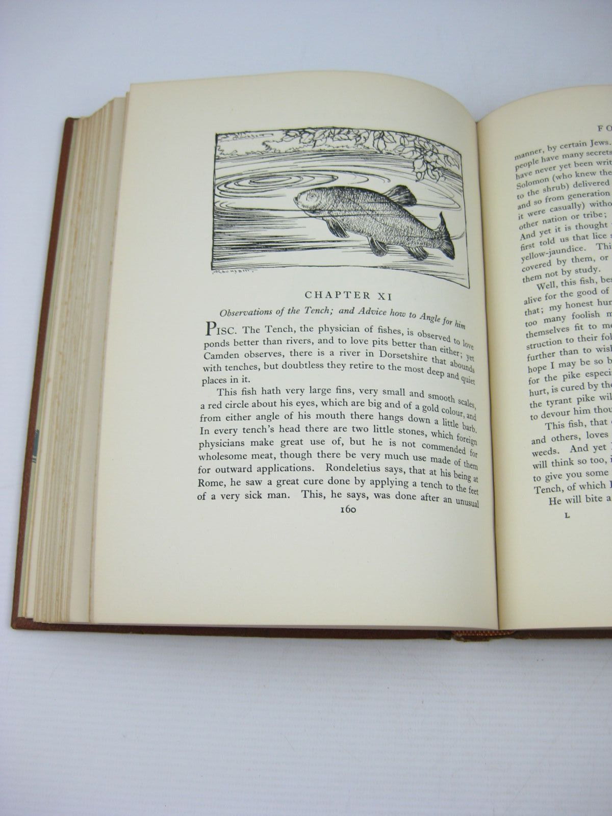Photo of THE COMPLEAT ANGLER written by Walton, Izaak illustrated by Rackham, Arthur published by George G. Harrap & Co. Ltd. (STOCK CODE: 738893)  for sale by Stella & Rose's Books