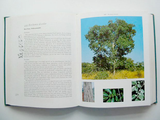 Photo of TREES OF THE KRUGER NATIONAL PARK (2 VOLUMES) written by Van Wyk, P. published by Purnell (STOCK CODE: 806647)  for sale by Stella & Rose's Books