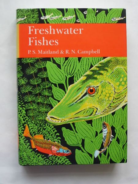 Photo of FRESHWATER FISHES OF THE BRITISH ISLES (NN 75) written by Maitland, Peter S. Campbell, R. Niall published by Collins (STOCK CODE: 809567)  for sale by Stella & Rose's Books