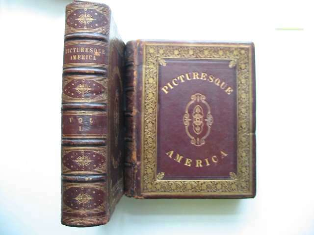 Photo of PICTURESQUE AMERICA written by Bryant, William Cullen published by D. Appleton & Company (STOCK CODE: 816352)  for sale by Stella & Rose's Books