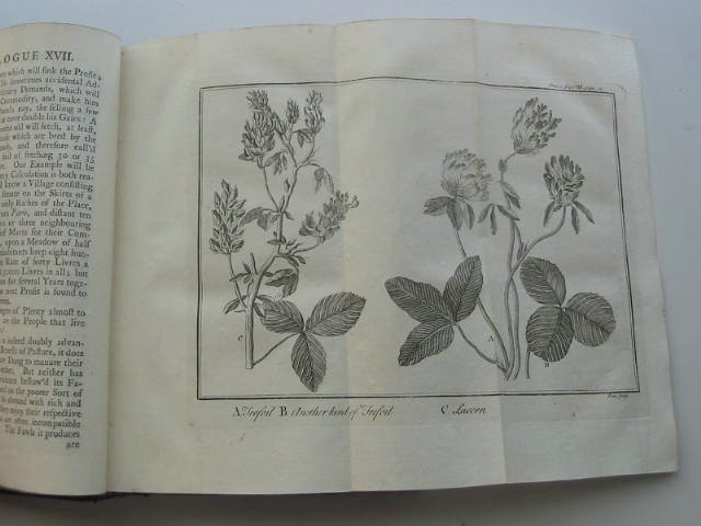 Photo of SPECTACLE DE LA NATURE, OR NATURE DISPLAY'D published by J. And J. Pemberton, R. Franklin, C. Davis (STOCK CODE: 819546)  for sale by Stella & Rose's Books