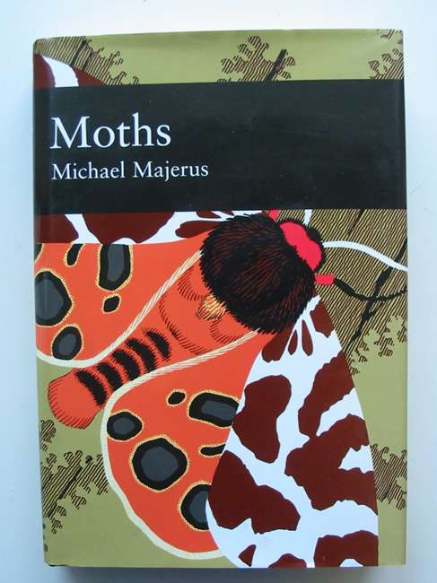 Photo of MOTHS (NN 90)- Stock Number: 820156