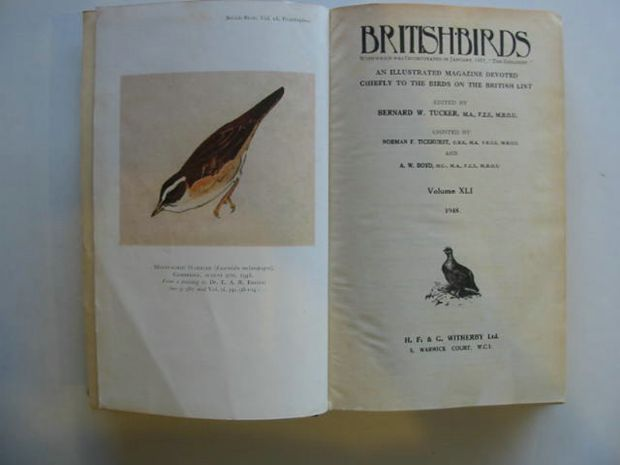 Photo of BRITISH BIRDS VOL. XLI written by Tucker, Bernard W. published by H.F. & G. Witherby Ltd. (STOCK CODE: 875005)  for sale by Stella & Rose's Books