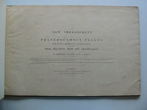 Photo of A NEW ARRANGEMENT OF PHANEROGAMOUS PLANTS written by Clarke, Benjamin published by J. Bale (STOCK CODE: 984697)  for sale by Stella & Rose's Books