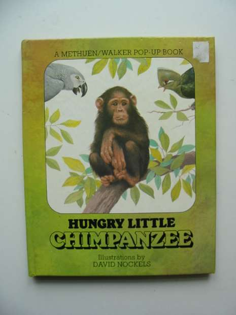 Photo of HUNGRY LITTLE CHIMPANZEE- Stock Number: 991282